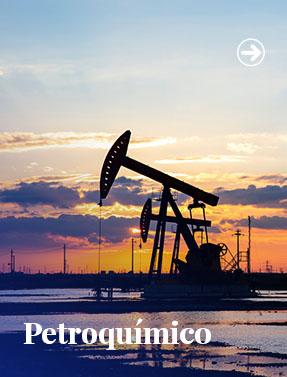 Petroquímico